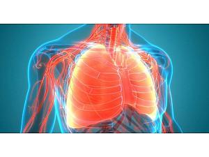 Πώς μπορώ να προφυλαχτώ από τις ιογενείς αναπνευστικές λοιμώξεις;